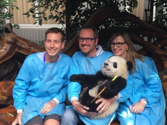 Holding a panda
