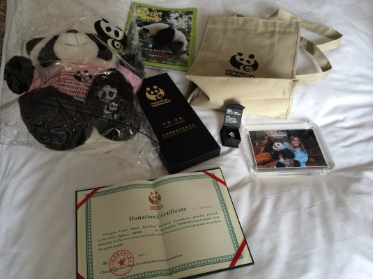 All the panda swag you could ever want